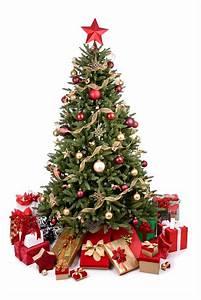 Weihnachtsbaum Komplett Geschmückt : weihnachten so bleibt der christbaum frisch mein bau ~ Markanthonyermac.com Haus und Dekorationen