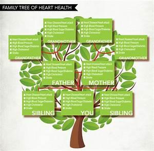 alaska heart beat winter 2016 alaska heart vascular With medical family tree template
