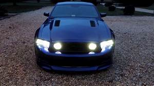 Ford Mustang With Ford Gt Lights 2013 Ford Mustang Gt Fog Light Tint Night View With Fog