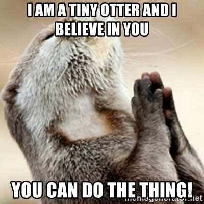 Praying Memes - i am a tiny otter and i believe in you you can do the thing praying otter meme generator