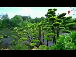 Plante Pour Jardin Japonais : jardin au c ur d 39 un jardin japonais youtube ~ Dode.kayakingforconservation.com Idées de Décoration