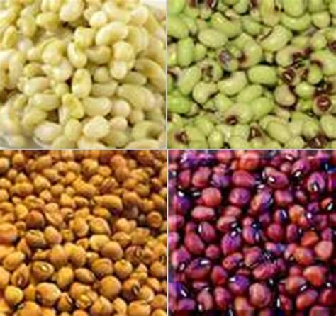 types of peas field peas drick s rambling cafe