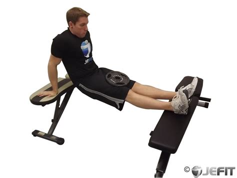 weighted bench dip weighted bench dip exercise database jefit best