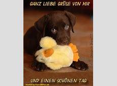 Schönen Tag Whatsapp Grüsse Facebook BilderGB Bilder