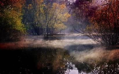 Mist Trees Water Forest Reflection Colorful Landscape