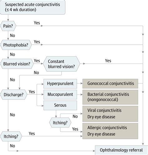 review  conjunctivitis diagnosis  treatment allergy