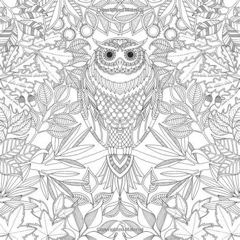 secret garden  inky treasure hunt  colouring book