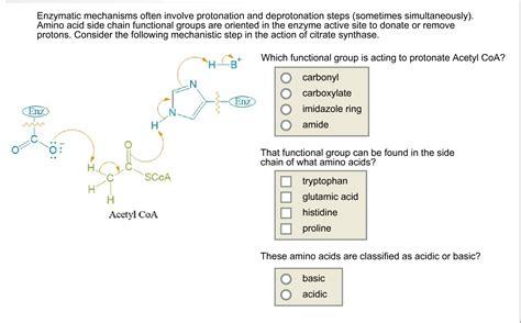 Enzymatic Mechanisms Often Involve Protonation And