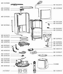 30 Cuisinart Coffee Maker Parts Diagram