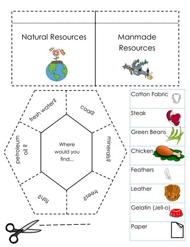 natural resources foldable interactive notebook pages by sventresca teaching resources