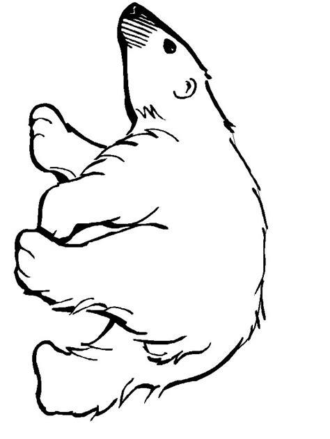 polar template 25 best ideas about polar crafts on polar bears for polar and
