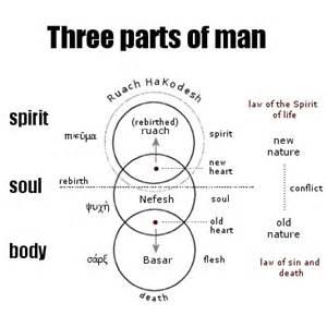 Tripartite Man Body Soul Spirit Is