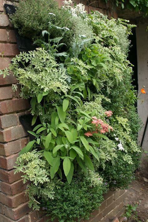 Edible Vertical Garden by Celebrating Vertical Gardening With Garden Up