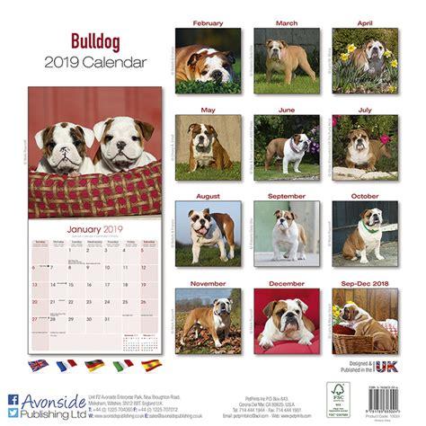 bulldog calendars ukposterseuroposters