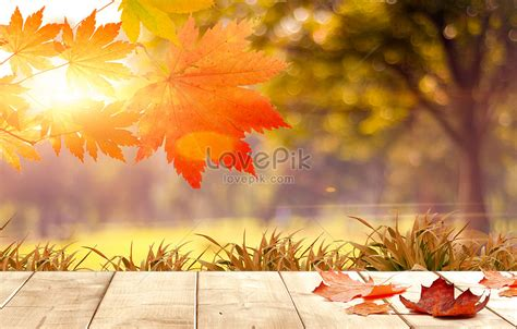 Fall Backgrounds by Fall Background Creative Image Picture Free