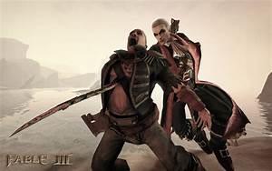 Image 9 de Fable 3 sur PC