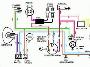 1998 Sportster Wiring Diagram  U2013 Bestharleylinks Info