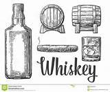 Whiskey Glass Bottle Cigar Barrel Illustration Vector Ice Cubes Whisky Alcohol Background Drawing Clipart Clip Bourbon Drink Coloring Line Sketch sketch template