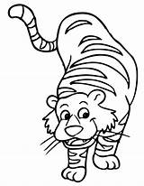 Tiger Coloring Cartoon Illustration Pages sketch template