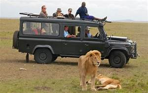 The Real Reason Why Kenya's Tourism Industry is on Its ...