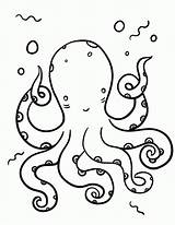 Coloring Octopus Pages Printable Pdf Colouring Coloringcafe Sheet Sheets Printables Sea Prints Colour Template Outline Everfreecoloring Discover sketch template