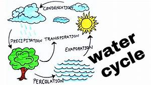 Water Cycle   How To Draw Water Cycle  Diagram Of Water
