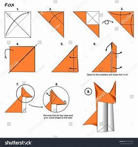 Origami Animal Traditional Fox Instructions Diagram Stock
