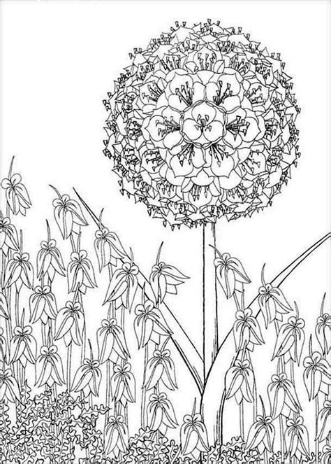 tree smile flower coloring page  print  coloring pages   color nimbus