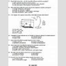 Worksheet  Biotic Vs Abiotic Factors *editable* Tpt