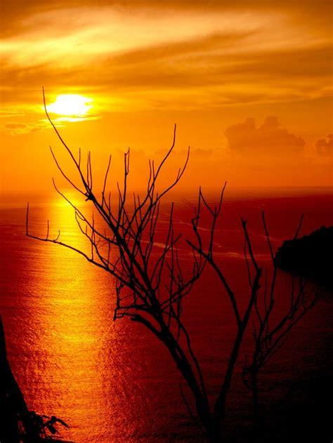 pemandangan sunset  pantai   pemandangan