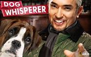 Cesar Millan Bio, Dog Whisperer, Net Worth, Death of Daddy ...