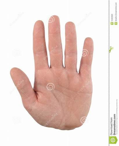 Palm Hand Stop Warning Gesture Dreamstime
