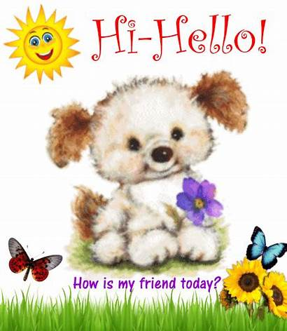 Friend Today Hello Hi Greetings Card Greeting