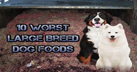 top  worst dry dog food brands  large breeds