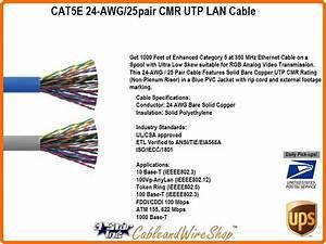 Cat5e 24  25 Pair Cmr Utp Lan Cable Blue