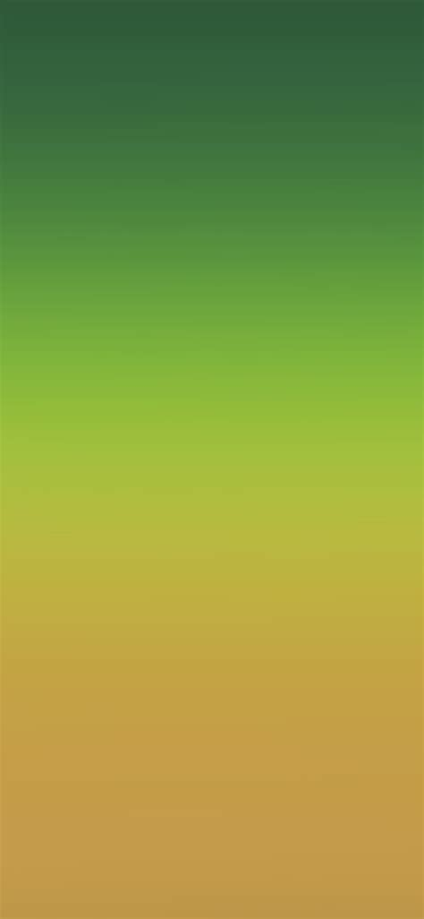 sk orange green party blur gradation wallpaper