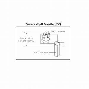 Wiring Diagram Pdf  120 Volt Copeland Compressor Wiring
