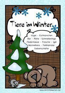 Vögel Im Winter Kindergarten : die besten 25 v gel im winter ideen auf pinterest kardinal v gel basteln f r v gel im winter ~ Whattoseeinmadrid.com Haus und Dekorationen
