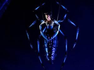 Image Gallery spider man arachne