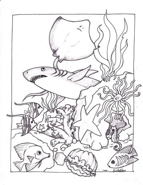 ocean coloring pages ideas  pinterest ocean