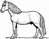 Horse Coloring Pages Silhouetted sketch template