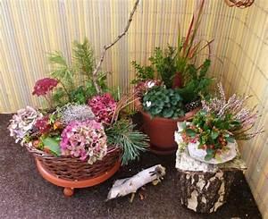Herbstdeko Für Den Garten : herbstbepflanzung auf dem balkon oder der terrasse ~ Orissabook.com Haus und Dekorationen