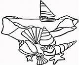 Coloring Shells Sea Popular Printable sketch template