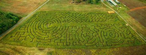 corn-maze-sunset-1-3 - Yoders' Farm