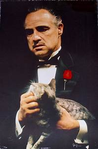 STEVE SCHAPIRO THE GODFATHER CAT Hand Signed Limited ...