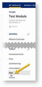 Bulk Create Folders - Luminus Staff Guide