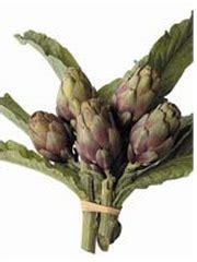 comment cuisiner les artichauts violets les artichauts violets marinés à l huile d olive