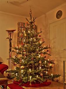 Weihnachtsbaum Wasser Geben : pflegetipps tannen meyer ~ Bigdaddyawards.com Haus und Dekorationen