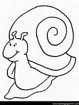 Coloring Snails Snail Pages Coloringpages101 sketch template
