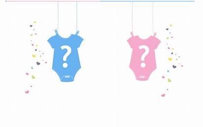 Reveal Gender Boy Vector Background Newborn Party